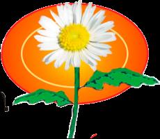 flor-fonda-margarita