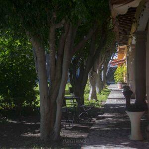 fm-izucar_jardin01